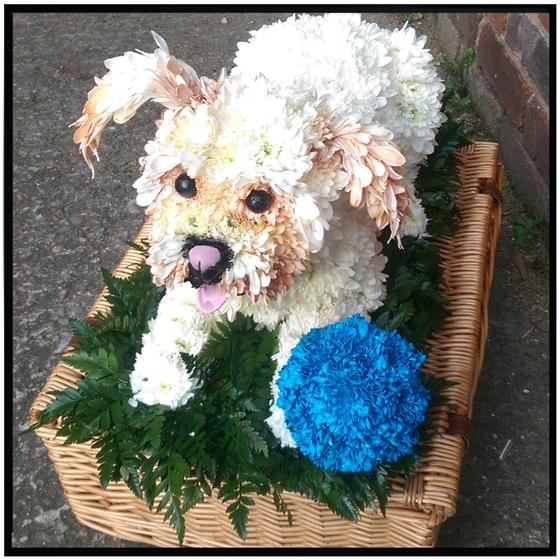 Dog and Ball Floral Tribute