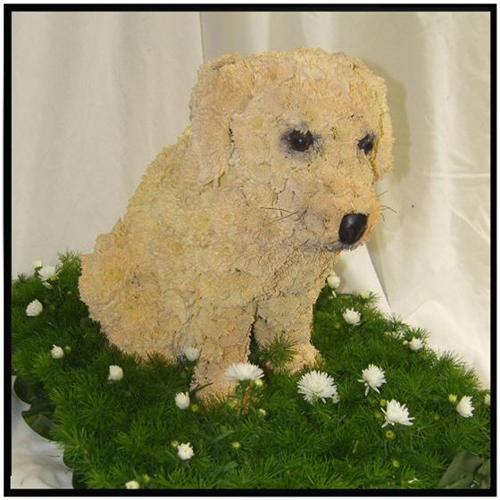 3D Puppy Floral Tribute