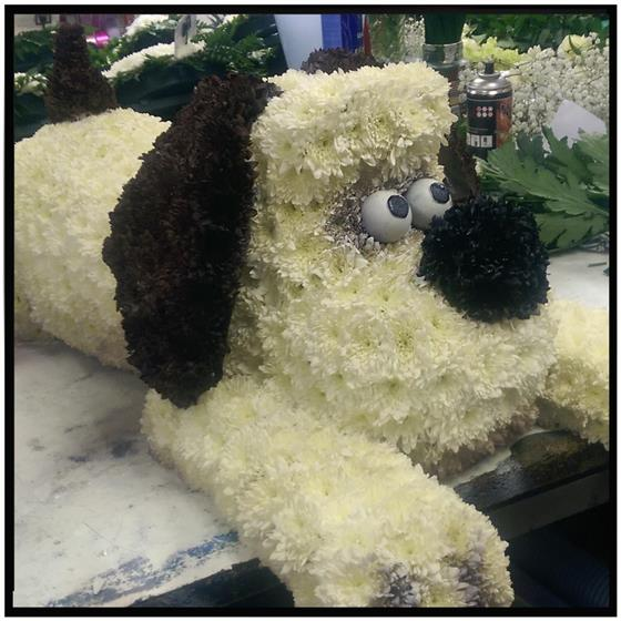 Gromit Floral Tribute