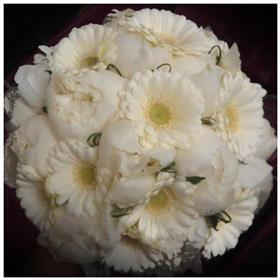 fwthumbpeony and gerbera bouquet.jpg